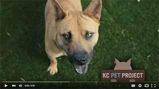 KCPP_video