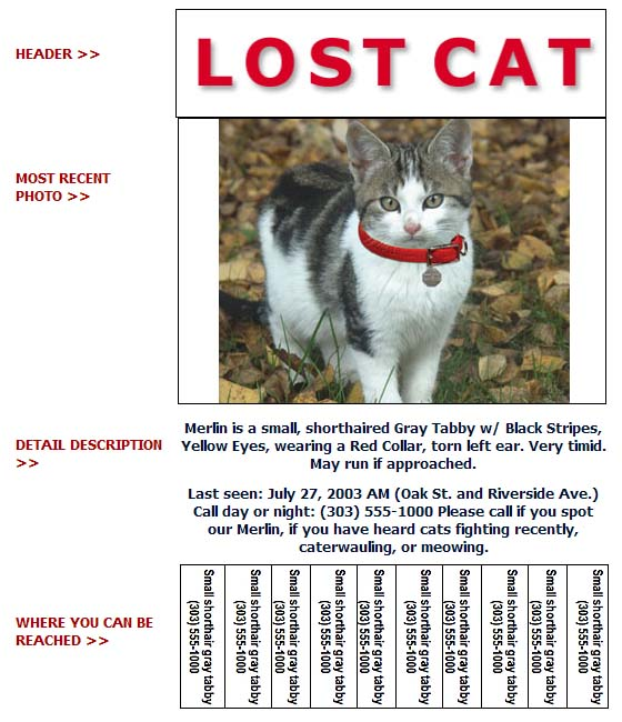 Lost Dogs Home Free Cat Adoption
